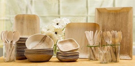 Live Chennai: Eco Friendly Bagasse Plates for serving Meals
