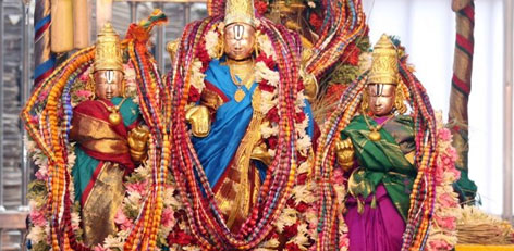 Live Chennai: TTD introduces group booking for darshan