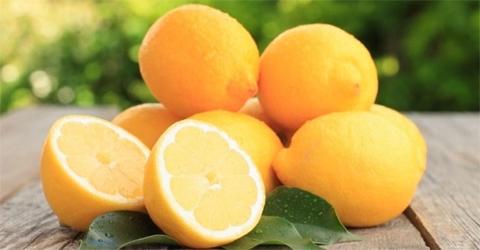 Live Chennai: Bid goodbye to warts by using lemon,warts,lemon