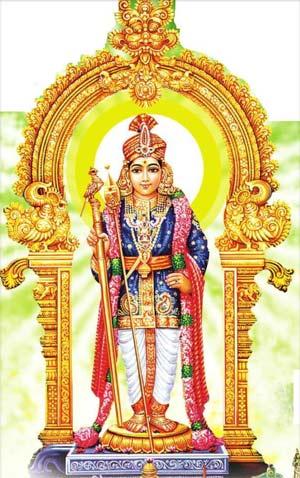 Live Chennai : Thai pusam,Hindu Festival Thai pusam, Thai pusam